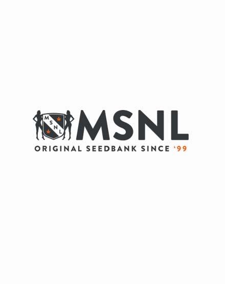 MSNL Twitter